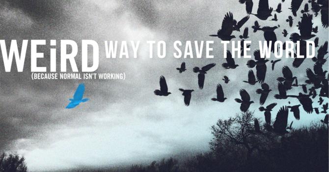 A WEiRD Way to Save The World