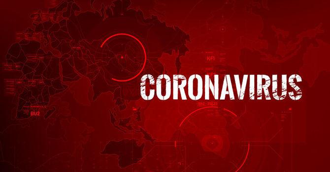 Novel Coronavirus image