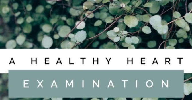A Healthy Heart Examination