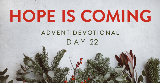 Day 22- Hope is Coming image