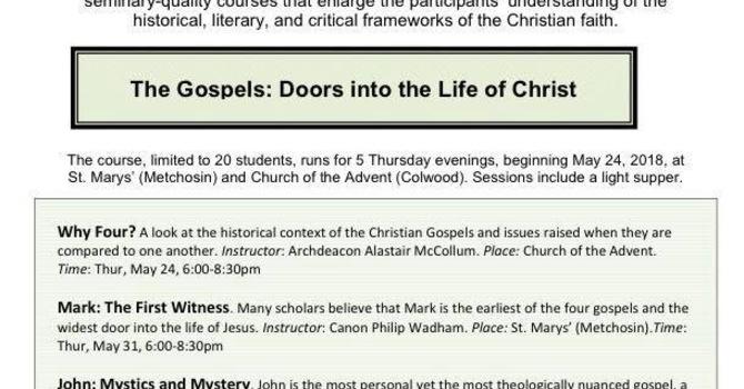 Focus Bible Study  image