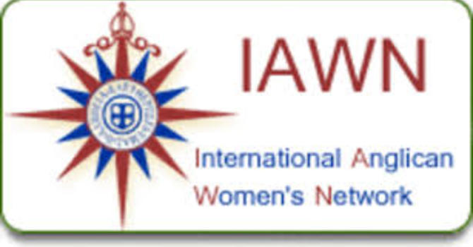 IAWN Delegation to the UN Status of Women 2017 image