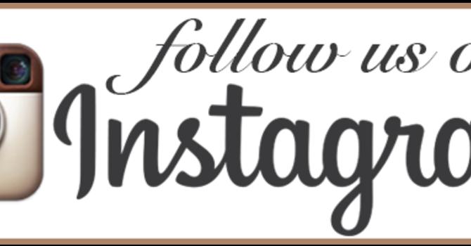 St. Anne's is on Instagram! Follow us! image