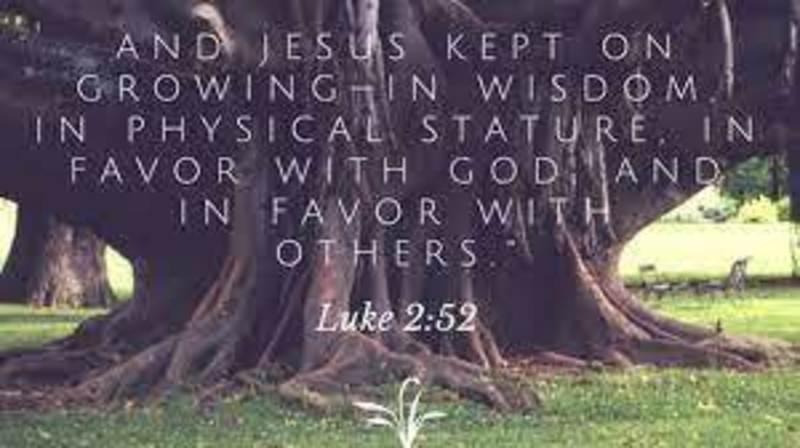 Jesus' Growth