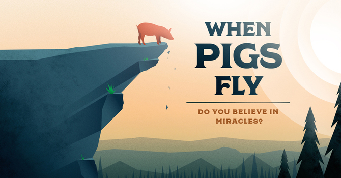 When Pigs Fly Pt. 4