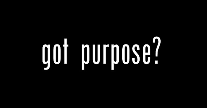 Why There's No Point Without Purpose image