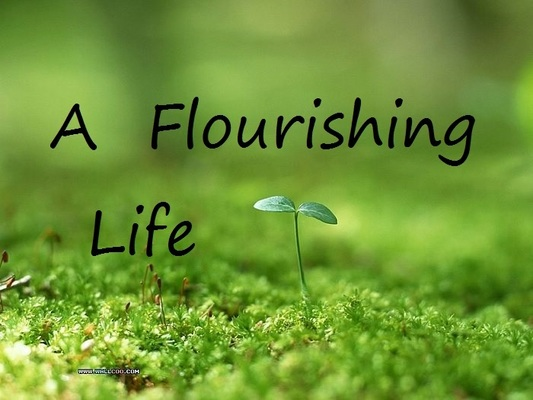 A Flourishing Life
