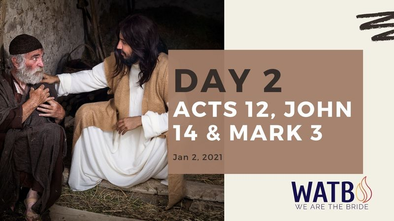 Day 2 - 40 Day w/Dr. June Knight - Acts 12, John 14, & Mark 3