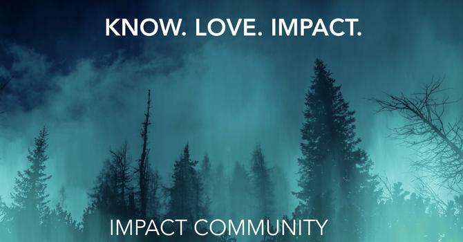 Impact Community