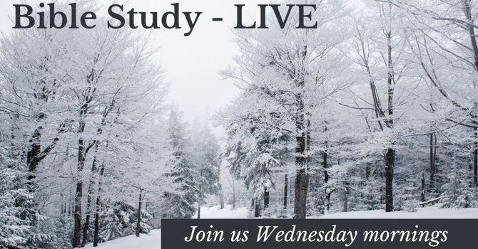 Ladies' Wednesday Facebook Live!