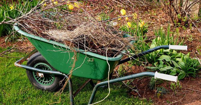 Garden Clean Up image