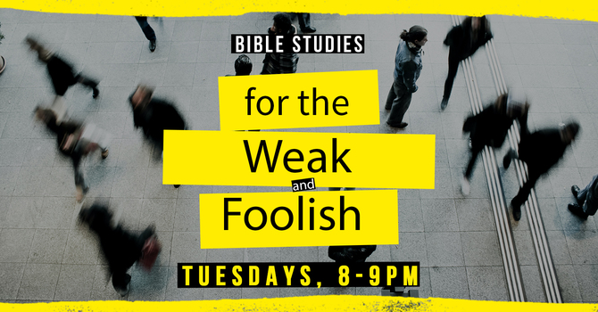 Bible Studies for the Weak and Foolish
