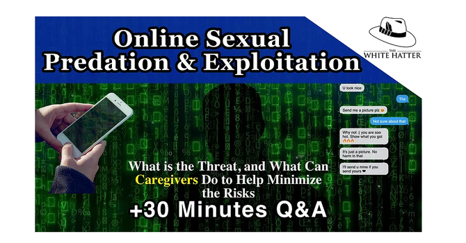 Online Sexual Predation and Exploitation image