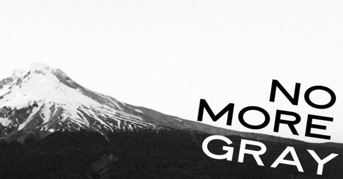 No More Gray