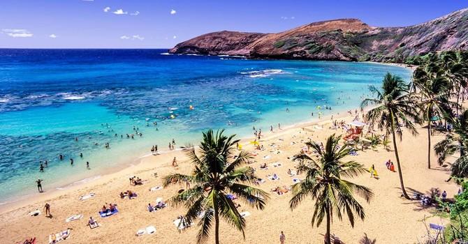 Politicians in Hawaii image