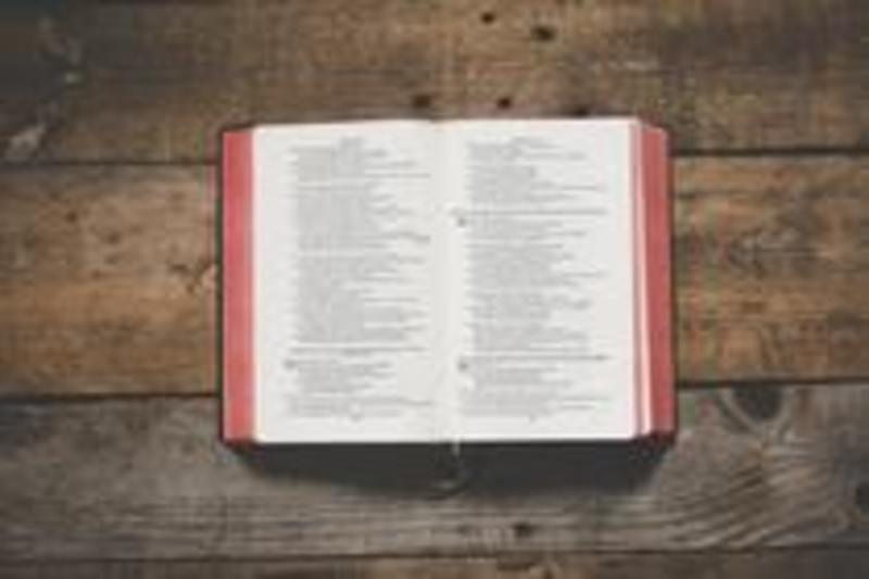 Romans 13:1-2 & Hebrews 10:24-25 (Jan 10/21)