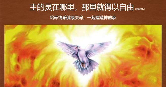 主的灵在哪里,那里就得以自由