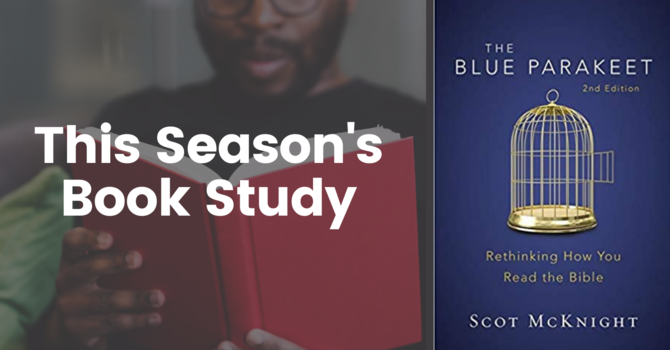 The Blue Parakeet Book Study