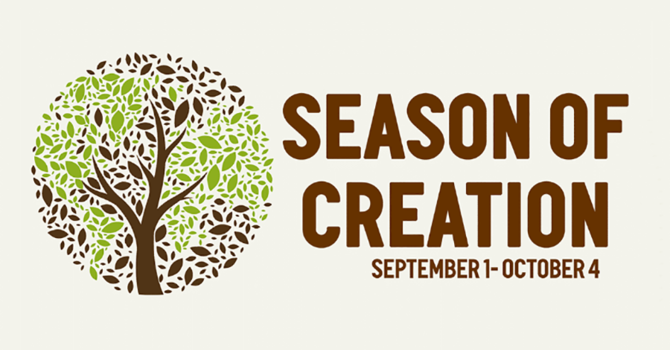 Churches urged to join in World Day of Prayer for Creation image