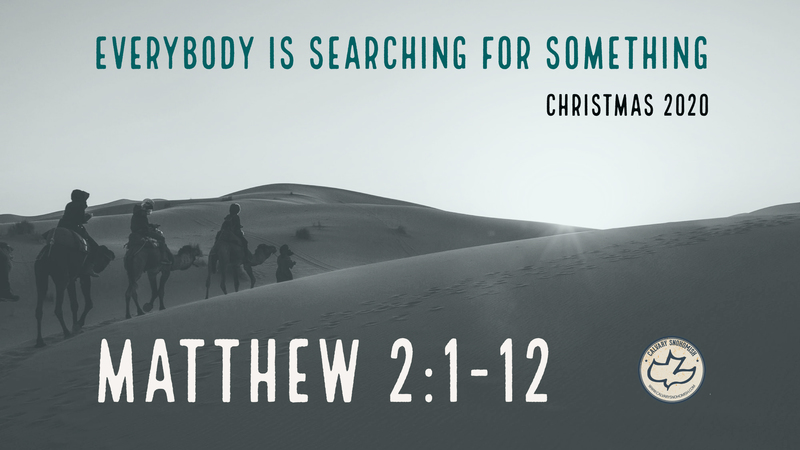 Everybody is Searching for Something