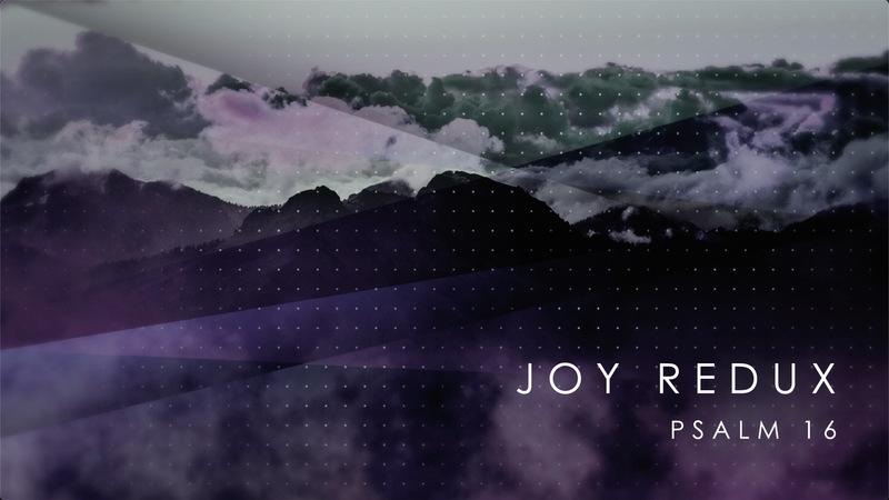 JOY REDUX
