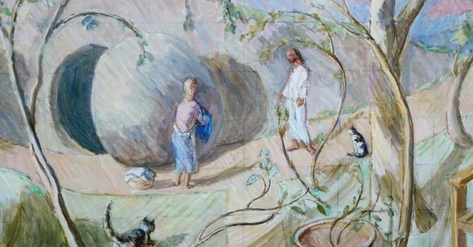 Easter Vigil - The Gift of Darkness image