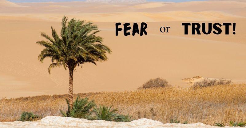 """Fear or Trust!"""