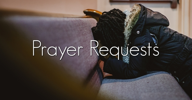 This Week's Prayer Requests