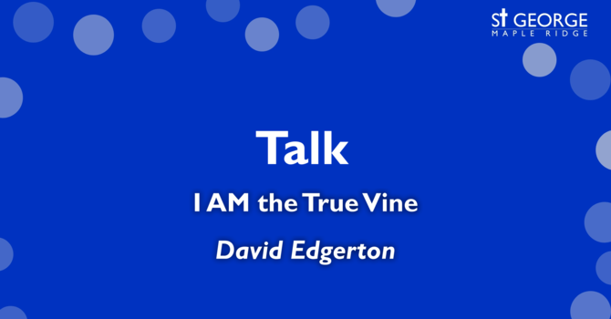 """I AM the True Vine"" Reverend David Edgerton image"