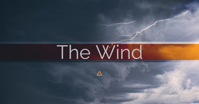 The Wind image
