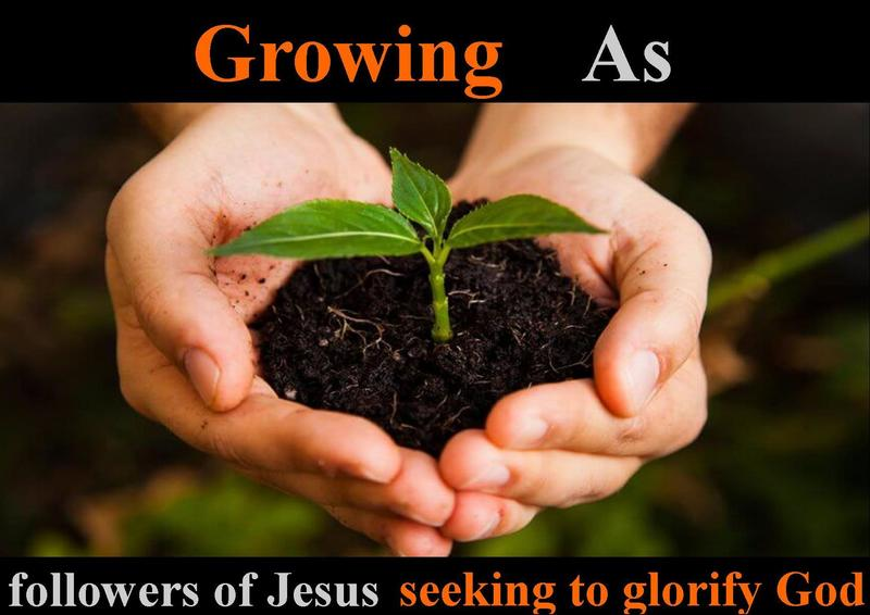 """""""Growth That is Rooted"""""""