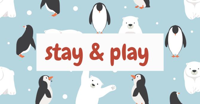 Stay & Play-Snowy Polar Bears