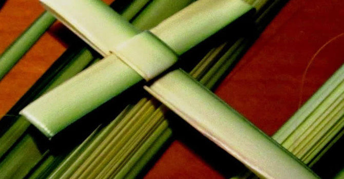 Palm Crosses image