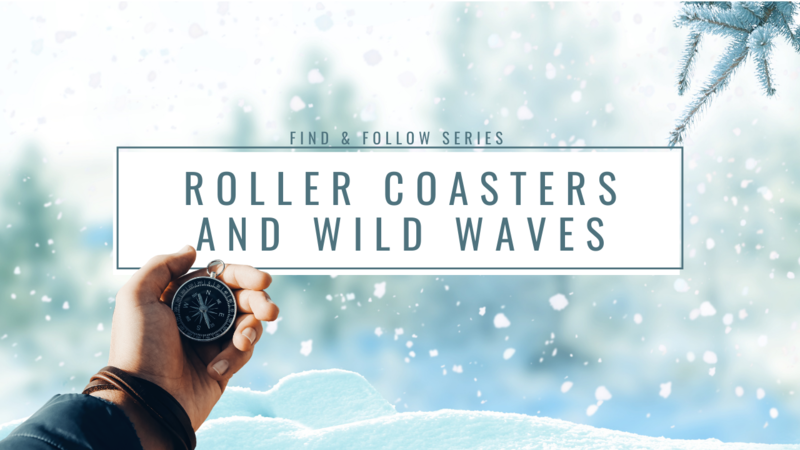 Roller Coasters & Wild Waves