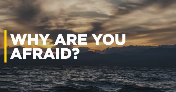 Why Are You Afraid?
