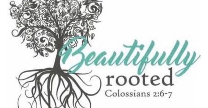 Beautifully Rooted