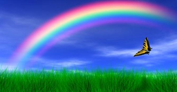 All Part of God's Rainbow