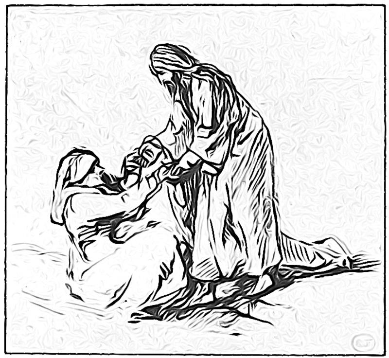 Healed to Serve