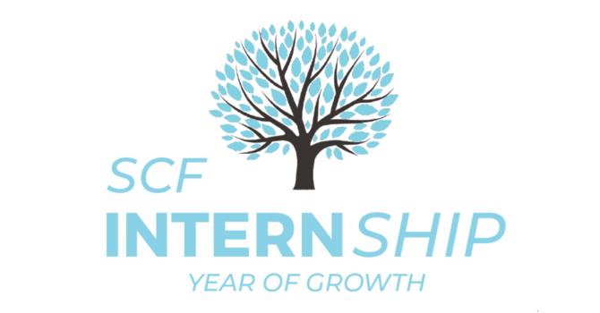Internships image