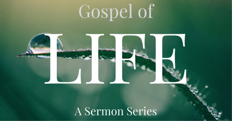 Gospel of Life Session #5