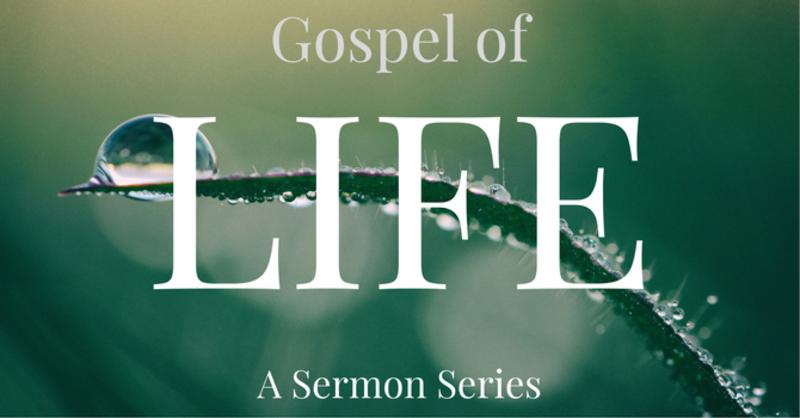 Gospel of Life Session #4