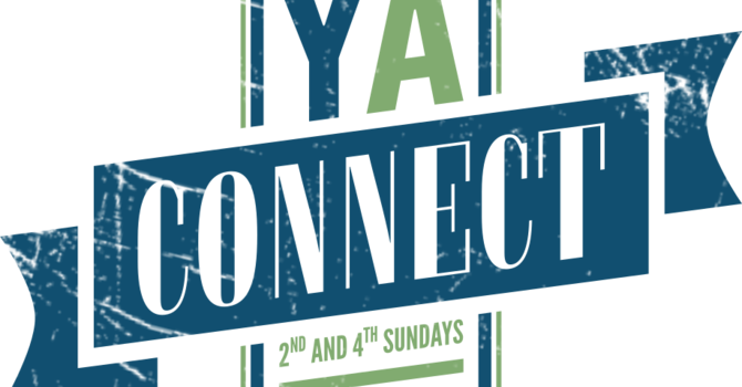 Young Adults Connect