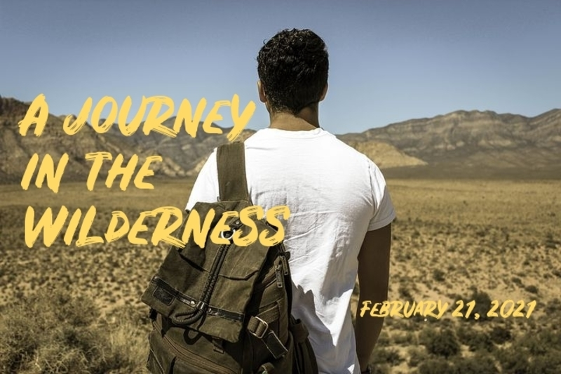 A Journey in the Wilderness