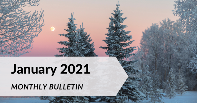 January 2021 Monthly Bulletin image