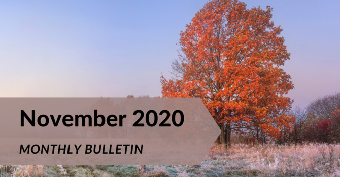 November 2020 Monthly Bulletin image