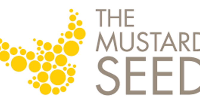 The Mustard Seed needs volunteers this summer! image