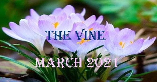 March Vine image