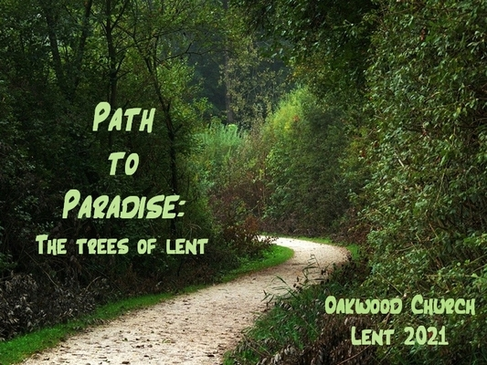 Path to Paradise: The Trees of Lent