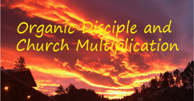 Organic Disciple and Church Multiplication