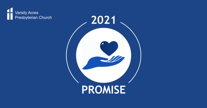 2021 Promise Campaign image